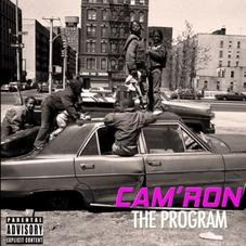 """Cam'Ron Keeps It Gully On """"The Program"""""""
