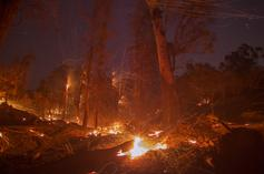 Teen Guilty Of Burning Down 48,000 Acres Of Land Must Pay $36 Million