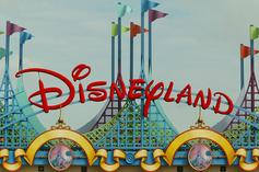 Disney World Tourist Banned For Life After Punching Employee In The Face