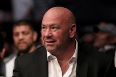 Dana White Shuts Down Any Chance Of Working With Jake & Logan Paul