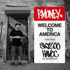 Skyzoo - Welcome To America  Feat. Havoc