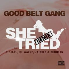 N.O.R.E. - She Tried (Remix) Feat. Lil Wayne, Ja Rule & Birdman