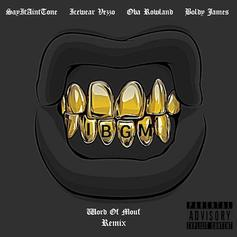 SAYITAINTTONE - Word Of Mouf (Remix) Feat. Icewear Vezzo, Oba Rowland & Boldy James