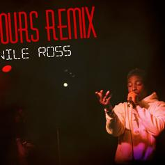 Nile Ross - 24 Hours (Remix)