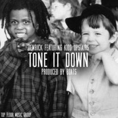 Demrick - Tone It Down