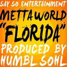 Metta World Peace - Florida