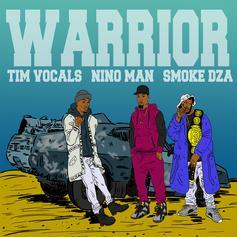 Tim Vocals - Warrior Feat. Nino Man & Smoke DZA