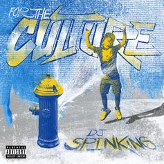 DJ SpinKing - For The Culture