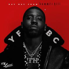 """Wale Makes Unexpected Appearance On YFN Lucci's """"Too Much"""""""
