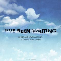 "Lil Peep, iLoveMakonnen, & Fall Out Boy Wave Emo Flag On ""I've Been Waiting"""