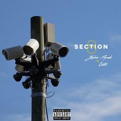 """Lute Joins Jackie Spade On """"Section 8"""""""