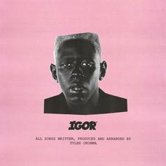 "Tyler, The Creator Delivers A Fire Album With ""IGOR"""