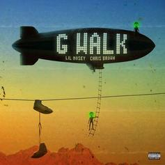 "Lil Mosey & Chris Brown Hit The ""G Walk"" As A Duo"