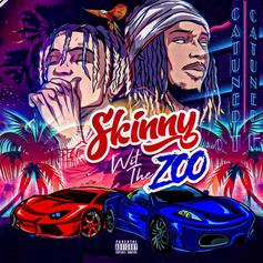 "Stream SkinnyFromThe9 & Fetty Wap's Joint EP ""Skinny Wit The Zoo"""