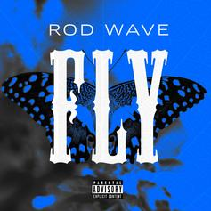 """Rod Wave Reflects On The Past, Present & Future On """"Fly"""""""