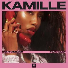 """Wiley Teams Up With U.K.'s Kamille On """"Don't Answer"""""""