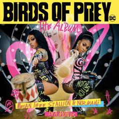 """Megan Thee Stallion & Normani Form The Ultimate Girl Power Duo On """"Diamonds"""" For """"Birds Of Prey"""" Soundtrack"""