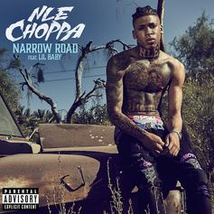 "NLE Choppa Enlists Lil Baby For Brand New Track ""Narrow Road"""