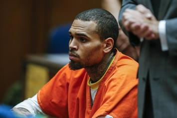 Chris Brown Transferred To Gen Pop In Virginia's Northern Neck Regional Jail