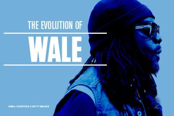 The Evolution Of Wale