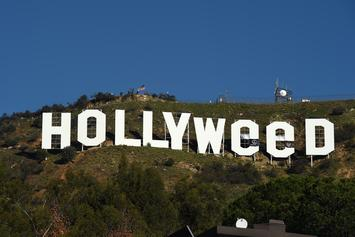 """""""Jesus Hands"""" Believed To Be Behind The """"Hollyweed"""" Sign"""