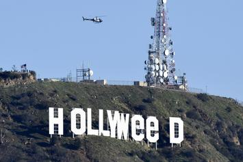 "The ""Hollyweed"" Prankster Turns Himself Into Police"