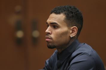 Chris Brown Hit With 5-Year Restraining Order In Karrueche Tran Case