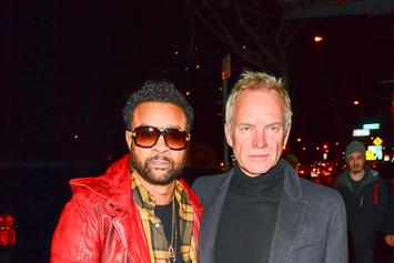 Shaggy And Sting Prepare Collaborative Album For 4/20 Release