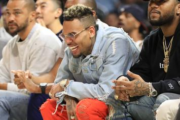Chris Brown Co-Signs B.o.B.'s Conspiracy Theories