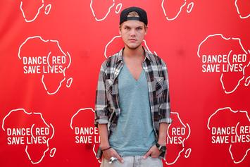 Avicii's Family Releases Statement Thanking Fans For Continued Support