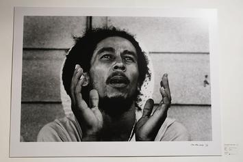 Bob Marley Assassination Rumours Surface: Ex-CIA Agent Allegedly Claims His Murder