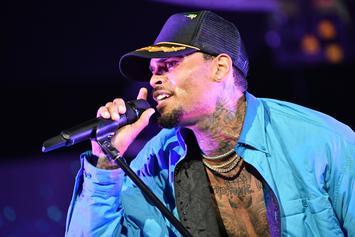 Chris Brown Thanks Drake & Canada For OVO Fest Adventure