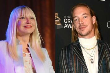 """Sia Propositioned Diplo For """"No-Strings Sex"""" Relationship"""