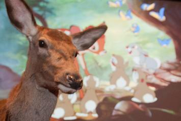 """""""Bambi"""" Will Be The Next Disney Film To Get A Live-Action Remake"""
