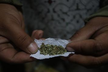 House Of Reps To Vote On Removing Cannabis From Controlled Substances List
