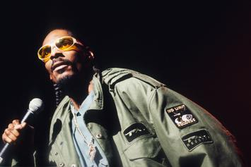 "Snoop Dogg Celebrates 27 Years Of ""Doggystyle"""